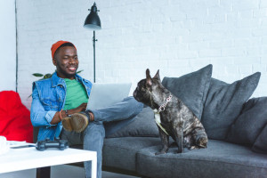 Young man working on laptop while sitting on sofa with bulldog